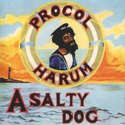 a-salty-dog.jpg